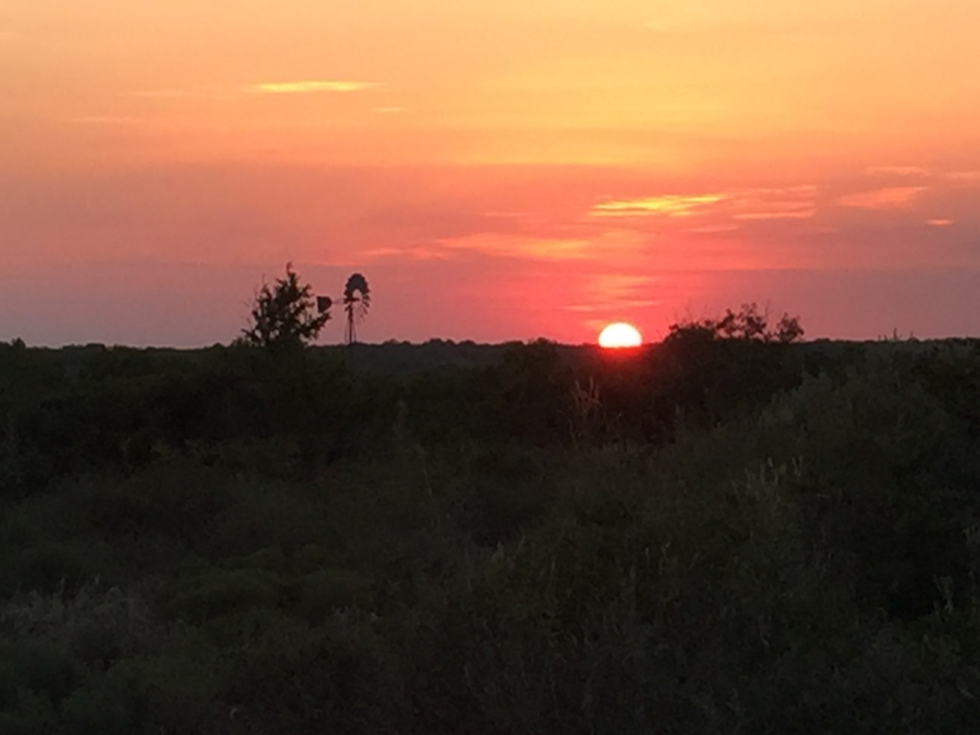 South Texas Ranches Real Estate , Hunting Ranches Homes, Texas